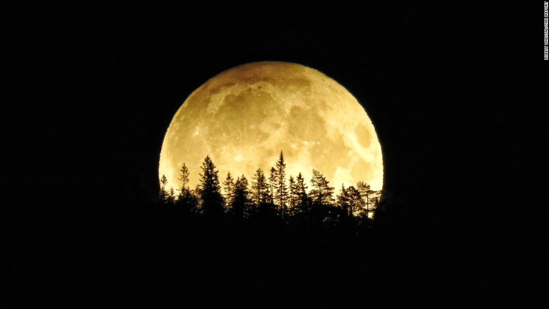 Reflecting in the Glow of The Full Moon